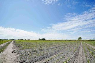 Photo 11: 16397 40 Avenue in Surrey: Serpentine Agri-Business for sale (Cloverdale)  : MLS®# C8038664