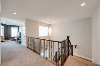 Photo 28: 804 ALBANY Cove in Edmonton: Zone 27 House for sale : MLS®# E4238903