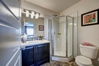 Photo 25: 122 Red Embers Gate NE in Calgary: Redstone House for sale : MLS®# C4141905