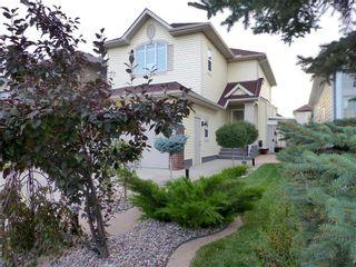 Photo 39: 8418 SADDLERIDGE Drive NE in Calgary: Saddle Ridge Detached for sale : MLS®# C4287136