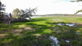 Photo 28: Lot Sandy Point Road in Jordan Ferry: 407-Shelburne County Vacant Land for sale (South Shore)  : MLS®# 202113639