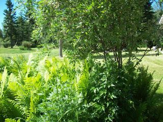 Photo 15: 87 231054-twp rd 623.8: Rural Athabasca County House for sale : MLS®# E4251972