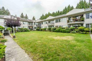 Photo 25: 209 5875 IMPERIAL Street in Burnaby: Upper Deer Lake Condo for sale (Burnaby South)  : MLS®# R2532613