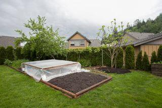 Photo 36: 7926 Brookwood in Chilliwack: Eastern Hillsides House for sale : MLS®# R2061263