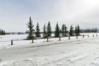 Photo 50: 66 Erin Green Way SE in Calgary: Erin Woods Detached for sale : MLS®# A1094602