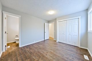 Photo 13: 100 DOVERVIEW Place SE in Calgary: Dover Detached for sale : MLS®# A1024220