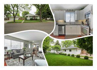 Photo 1:  in Edmonton: Zone 04 House for sale : MLS®# E4248809