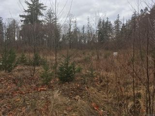 Photo 3: 2750 Iron River Rd in : CR Campbell River South Land for sale (Campbell River)  : MLS®# 869136