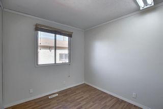 Photo 18: 19 TEMPLEBY Road NE in Calgary: Temple Residential for sale : MLS®# A1027919