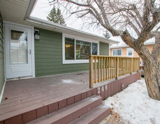 Photo 3: 246 Allan Crescent SE in Calgary: Acadia Detached for sale : MLS®# A1062297