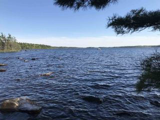 Photo 1: Lot 7 Albion Drive in Milton: 406-Queens County Vacant Land for sale (South Shore)  : MLS®# 202104215