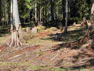 Photo 25: 413 CAMPBELL BAY Road: Mayne Island Land for sale (Islands-Van. & Gulf)  : MLS®# R2564883