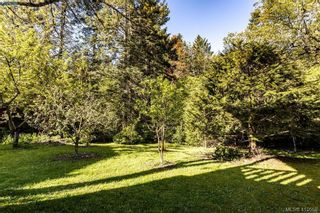 Photo 24: 685 Daffodil Ave in VICTORIA: SW Marigold House for sale (Saanich West)  : MLS®# 813850