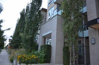 Photo 3: 410 55 EIGHTH Avenue in New Westminster: GlenBrooke North Condo for sale : MLS®# R2215008