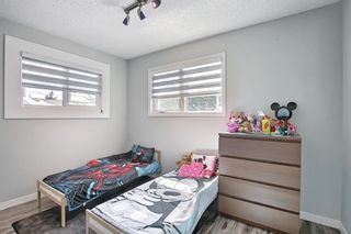 Photo 27: 1027 Penrith Crescent SE in Calgary: Penbrooke Meadows Detached for sale : MLS®# A1104837