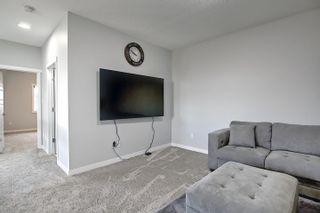 Photo 42: 15856 22 Avenue in Edmonton: Zone 56 House for sale : MLS®# E4248566