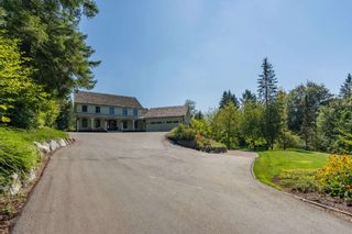 Photo 6: 9412 222 Street in Langley: Fort Langley House for sale : MLS®# R2555848