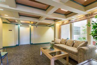 Photo 2: 304 3900 Shelbourne St in VICTORIA: SE Cedar Hill Condo for sale (Saanich East)  : MLS®# 768174
