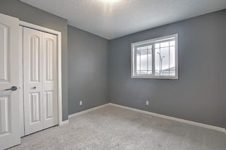 Photo 39: 6 Redstone Manor NE in Calgary: Redstone Detached for sale : MLS®# A1106448