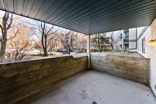 Photo 24: 103 11 Dover Point SE in Calgary: Dover Apartment for sale : MLS®# A1083330