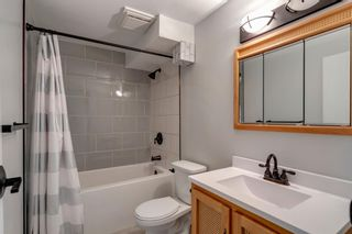 Photo 31: 84 Bermuda Way NW in Calgary: Beddington Heights Detached for sale : MLS®# A1112506