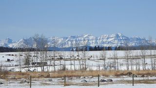 Photo 3: 100 160289 Highway 549 W: Rural Foothills County Detached for sale : MLS®# A1080701