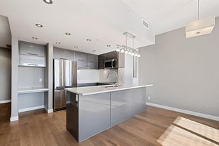 Photo 9: 303 1110 3 Avenue NW in Calgary: Hillhurst Apartment for sale : MLS®# A1124916