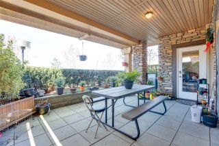 """Photo 18: 110 8258 207A Street in Langley: Willoughby Heights Condo for sale in """"Yorkson Creek"""" : MLS®# R2567046"""