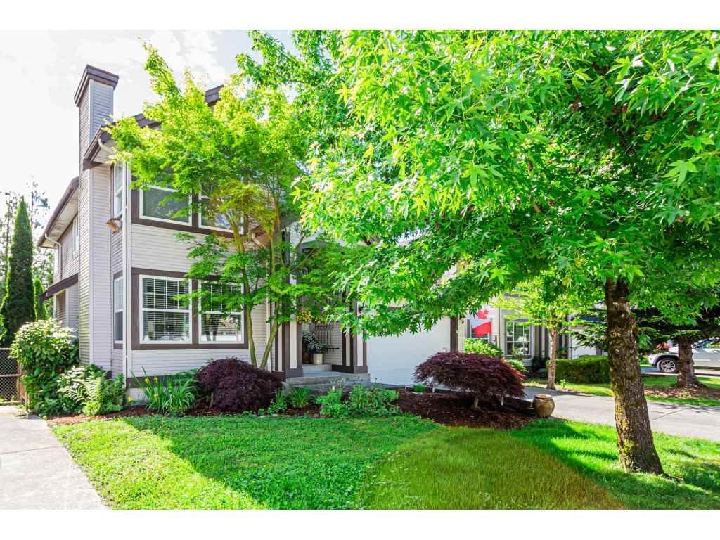 Photo 2: Photos: 11040 238 Street in Maple Ridge: Cottonwood MR House for sale : MLS®# R2468423