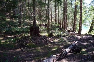 Photo 51: 979 Thunder Rd in Cortes Island: Isl Cortes Island House for sale (Islands)  : MLS®# 878691