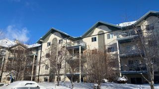 Photo 4: 404 21 Dover Point SE in Calgary: Dover Apartment for sale : MLS®# A1068387