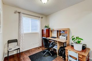 Photo 27: 137 Saddletree Close NE in Calgary: Saddle Ridge Detached for sale : MLS®# A1091689