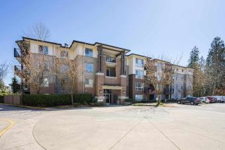 """Photo 2: 301 11667 HANEY Bypass in Maple Ridge: West Central Condo for sale in """"Haney's Landing"""" : MLS®# R2568174"""