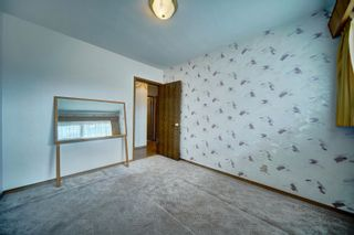 Photo 26: 16038 94A Avenue in Edmonton: Zone 22 House for sale : MLS®# E4266489