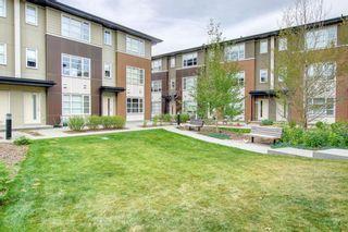 Photo 49: 123 Evansridge Park NW in Calgary: Evanston Row/Townhouse for sale : MLS®# A1152402