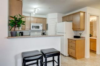 Photo 6: 304 1110 17 Street SW in Calgary: Sunalta Apartment for sale : MLS®# A1141399