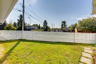 Photo 34: 302 Whitney Crescent SE in Calgary: Willow Park Detached for sale : MLS®# A1146432