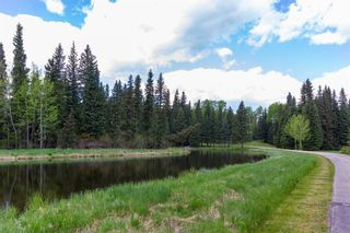 Photo 5: 231057 Rge Rd 54: Bragg Creek Residential Land for sale : MLS®# A1118605