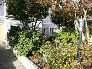 "Photo 18: 111 8976 208 Street in Langley: Walnut Grove Condo for sale in ""OAKRIDGE"" : MLS®# R2423848"