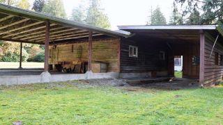 Photo 10: 11847 267 Street in Maple Ridge: Northeast House for sale : MLS®# R2322069