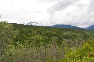 Photo 30: DL 1335A 37 Highway: Kitwanga Land for sale (Smithers And Area (Zone 54))  : MLS®# R2471833