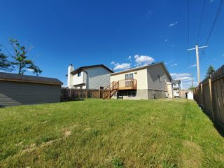 Photo 45: 23 Erin Meadows Court SE in Calgary: Erin Woods Detached for sale : MLS®# A1124454
