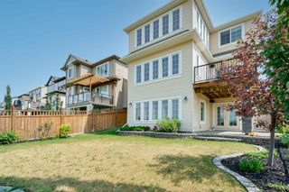 Photo 46: 300 Copperpond Circle SE in Calgary: Copperfield Detached for sale : MLS®# A1126422