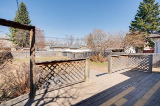 Photo 11: 1254 Regal Crescent NE in Calgary: Renfrew Detached for sale : MLS®# A1095101