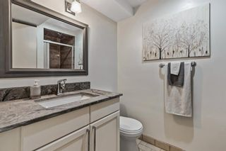 Photo 47: 16196 262 Avenue E: De Winton Detached for sale : MLS®# A1137379