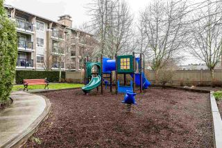 "Photo 22: 115 8915 202 Street in Langley: Walnut Grove Condo for sale in ""The Hawthorne"" : MLS®# R2536470"