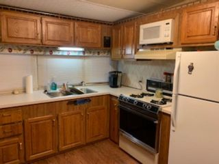 Photo 3: 99 Carefree Resort Lake: Rural Red Deer County Land for sale : MLS®# A1011429