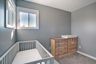 Photo 28: 132 Ventura Way NE in Calgary: Vista Heights Detached for sale : MLS®# A1081083