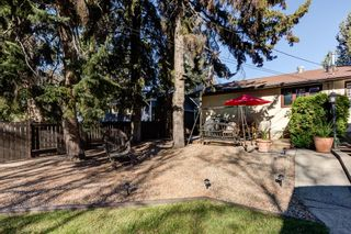 Photo 39: 17 STANLEY Drive: St. Albert House for sale : MLS®# E4266224