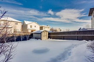 Photo 30: 2378 Reunion Street NW: Airdrie Detached for sale : MLS®# A1067245